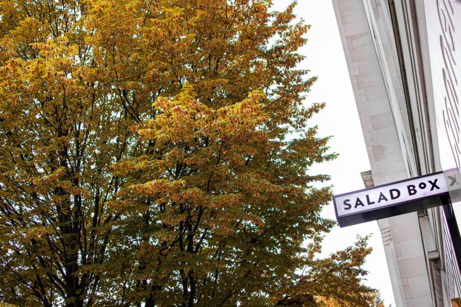 Salad Box, Birmingham